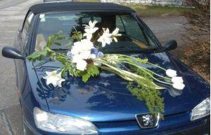 Βεντούζα OASIS auto corso mini
