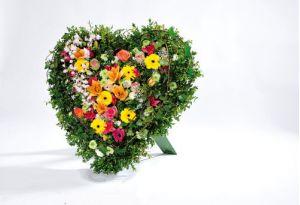 Σύνθεση με καρδιά bioline oasis