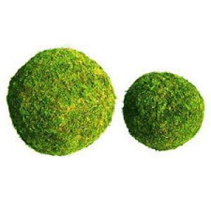 Σύνθεση με μπάλα oasis sec