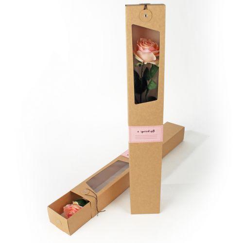 Carton box natural